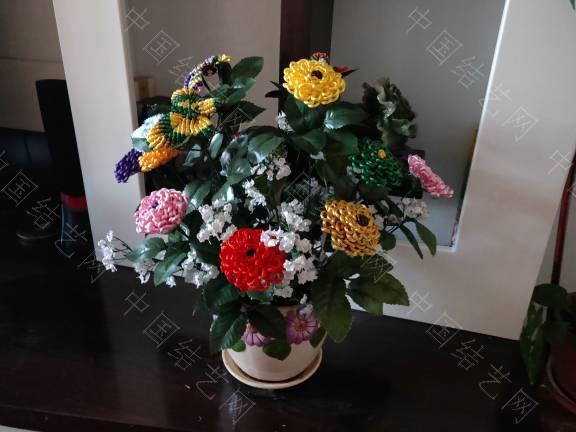 中国结论坛 菊花 菊花,菊花是什么意思了,菊花的功效与作用,菊花是什么器官,菊花种类大全 作品展示 185504wqbdcrf00cjdrb25
