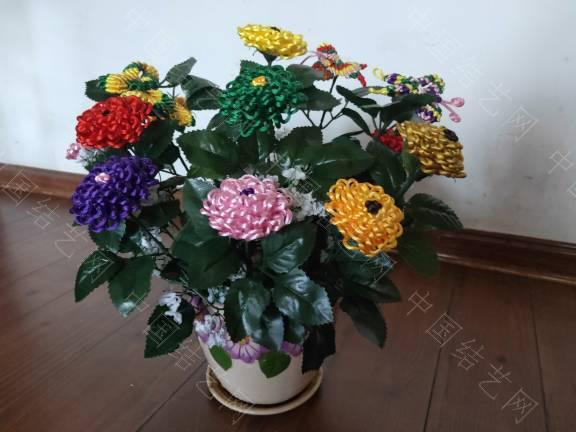 中国结论坛 菊花 菊花,菊花是什么意思了,菊花的功效与作用,菊花是什么器官,菊花种类大全 作品展示 185505jrt2jepapja9aito