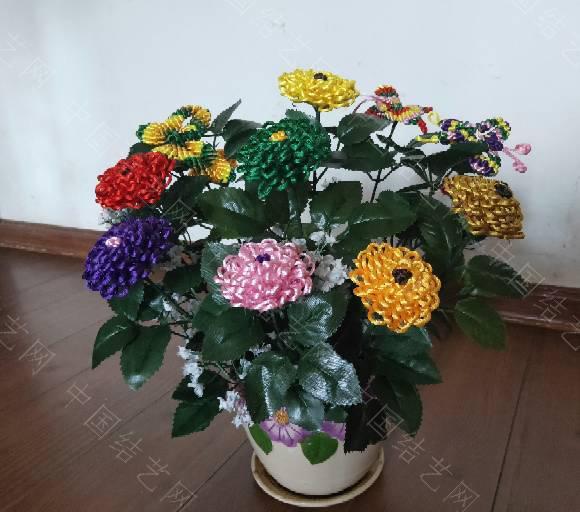 中国结论坛 菊花 菊花,菊花是什么意思了,菊花的功效与作用,菊花是什么器官,菊花种类大全 作品展示 185507obrw333o839o3z03