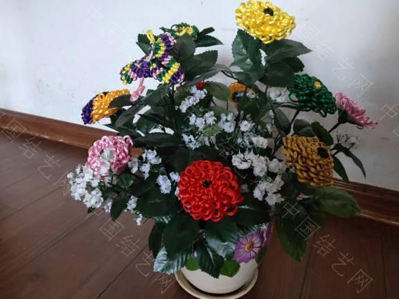 中国结论坛 菊花 菊花,菊花是什么意思了,菊花的功效与作用,菊花是什么器官,菊花种类大全 作品展示 185507q1cktk8llq7lg1ng