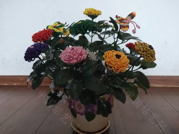 中国结论坛 菊花 菊花,菊花是什么意思了,菊花的功效与作用,菊花是什么器官,菊花种类大全 作品展示 185507yy76fzz81f12zpp6