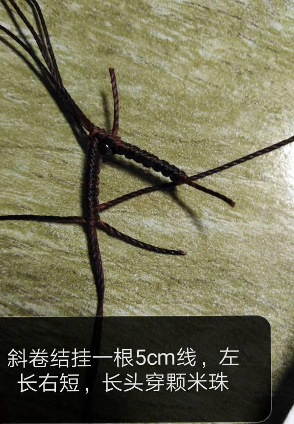 中国结论坛 十二星座之摩羯座教程  图文教程区 113958fa65cxodccb6cwzu