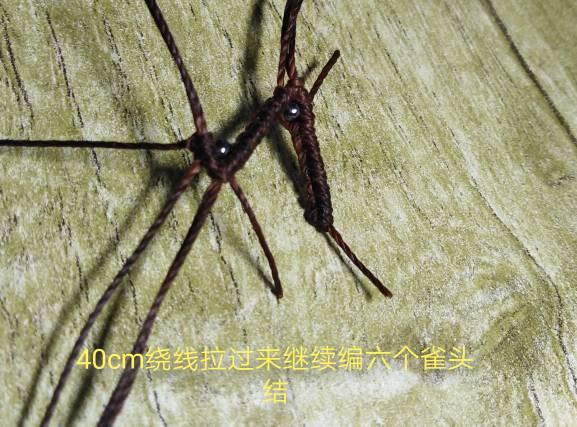 中国结论坛 十二星座之摩羯座教程  图文教程区 114000mfva756544ia6z6a