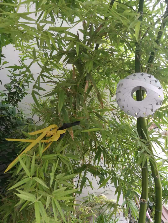 中国结论坛 自创二根线编的飞碟形扁体蝈蝈笼  作品展示 084418v0ehko3wf97uephr
