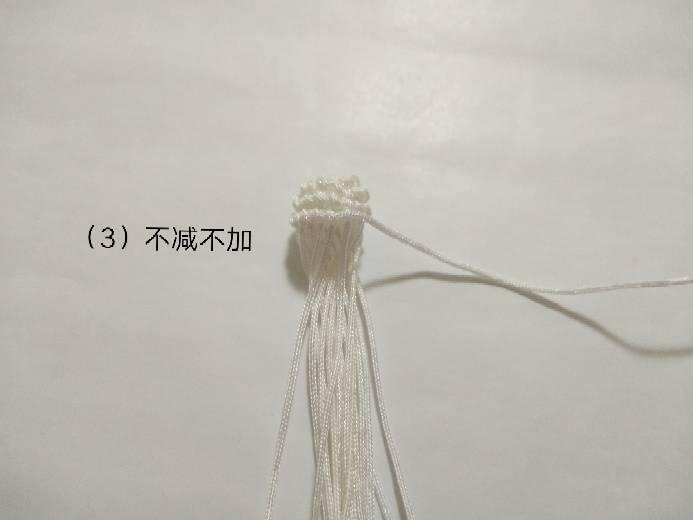 中国结论坛 小熊猫  图文教程区