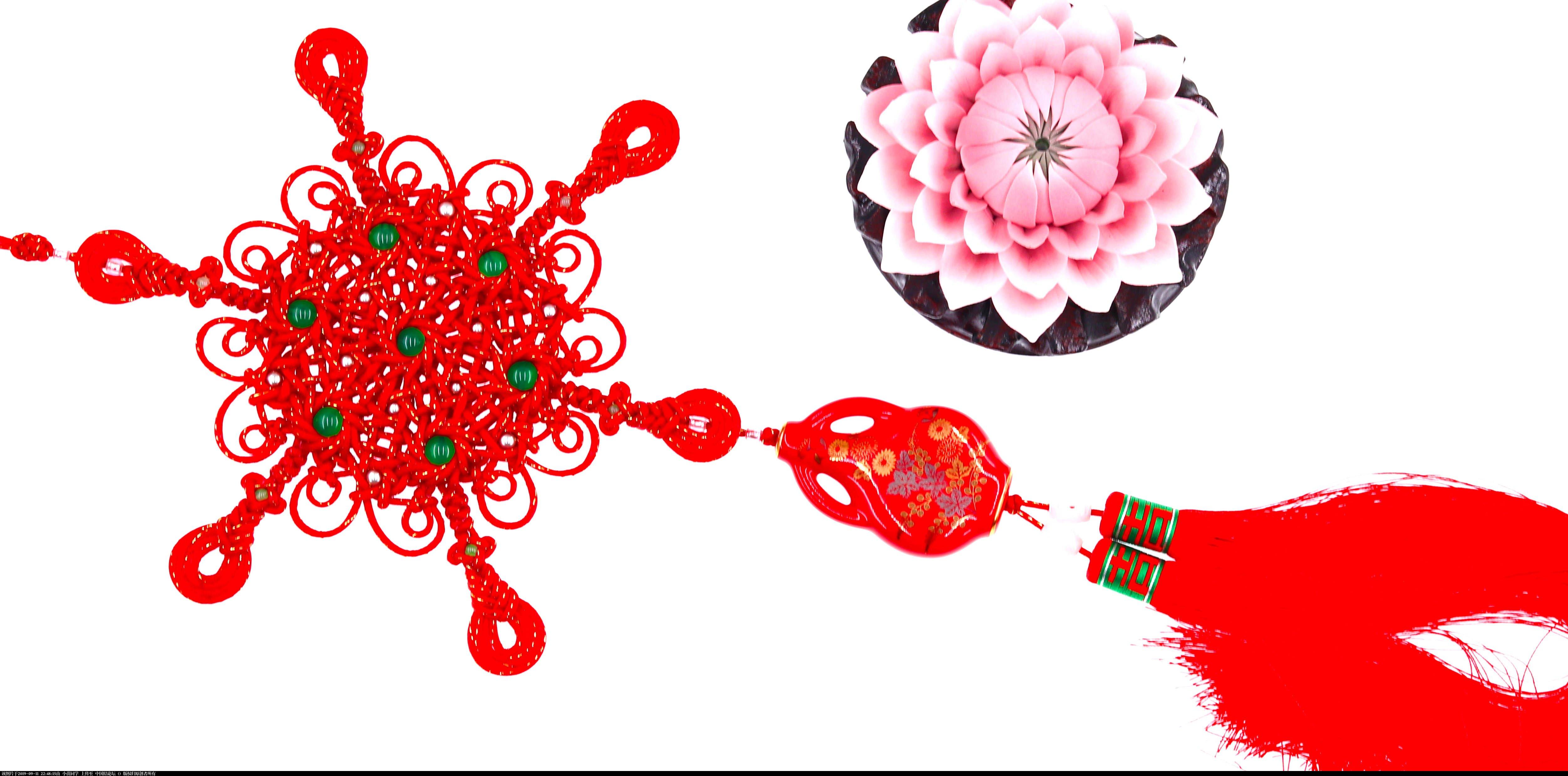 中国结论坛 琵琶结版女儿如花  作品展示 224131wuqbuusbm1llxoqx