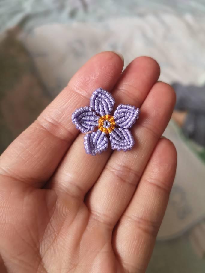 中国结论坛 花朵 好看的花图片,花朵风景,花朵制作,花朵头像,花朵名称 图文教程区 161531uarhlx291p74yshr