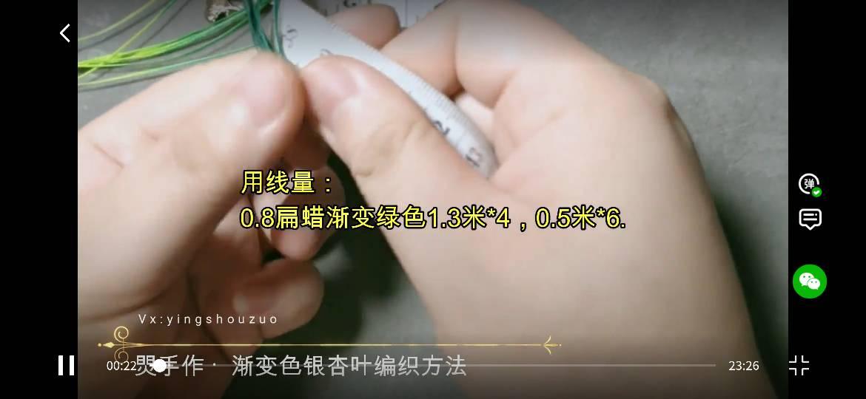 中国结论坛 焸灵的搬运工(银杏叶)  图文教程区 174624vfk2vq6kd7eqzbhk