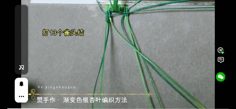 中国结论坛 焸灵的搬运工(银杏叶)  图文教程区 174627eraz0zfn1pbncv1q