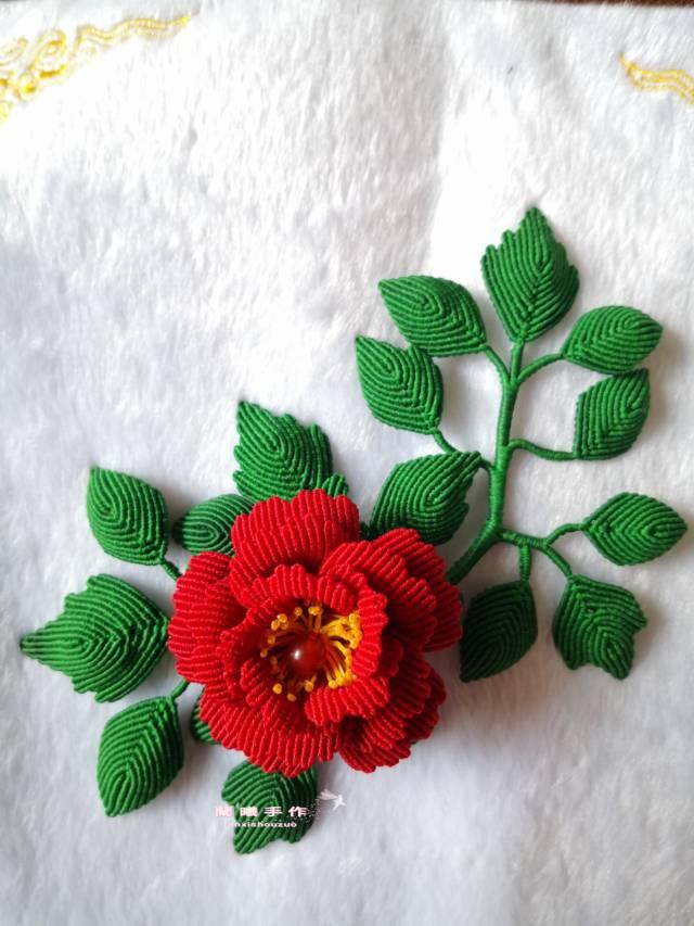 中国结论坛 迷上了花儿,收不了手了。  作品展示 145217hn3upffzb5oj1fo3