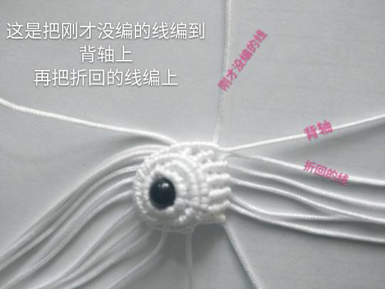 中国结论坛   图文教程区 124126pqwwk59w1krtsvwh