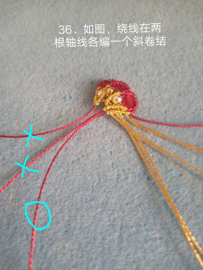 中国结论坛 宝蝶  图文教程区
