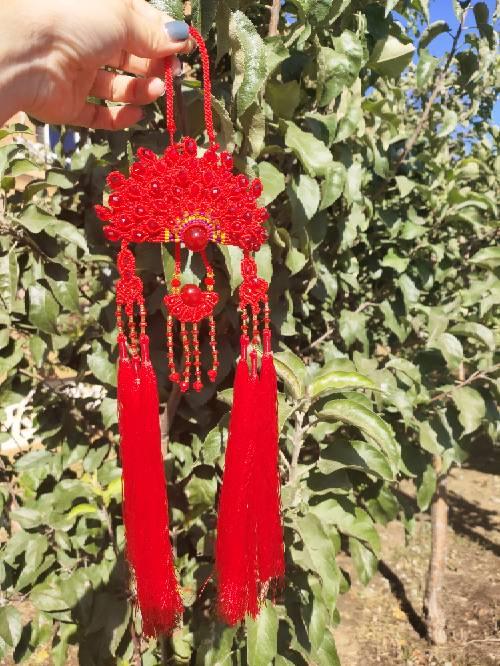 中国结论坛 凤冠花嫁  作品展示 145800ddj939mfle98lecv