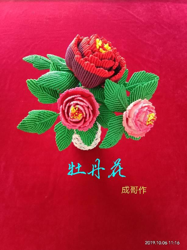 中国结论坛 牡丹花 牡丹,牡丹花,牡丹花的寓意和象征,牡丹花图片,世界上第一名最美的花 作品展示