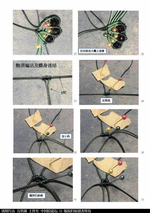 中国结论坛 为「蝴蝶翩翩」编教程  图文教程区 134216k6t8ctig186iwkwv