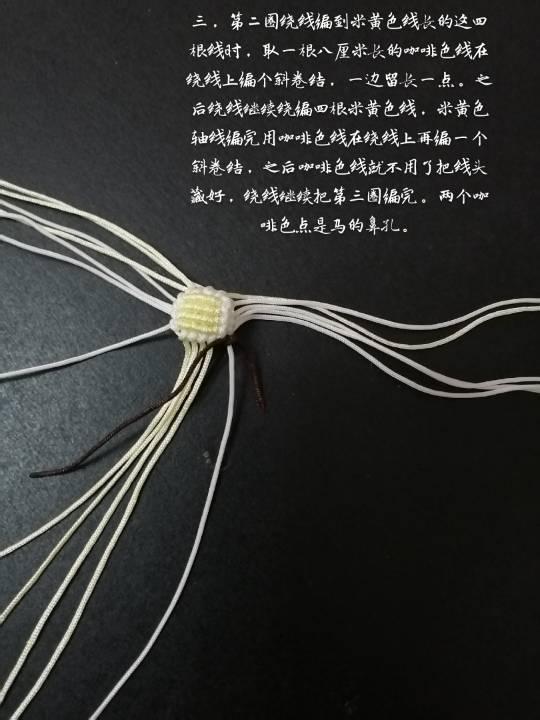 中国结论坛 白龙马  立体绳结教程与交流区 124209s81az7de8dvwzdzs