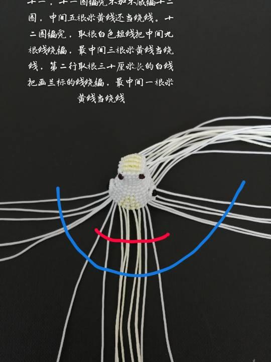 中国结论坛   立体绳结教程与交流区 124316nz95eldvwsdsse5r