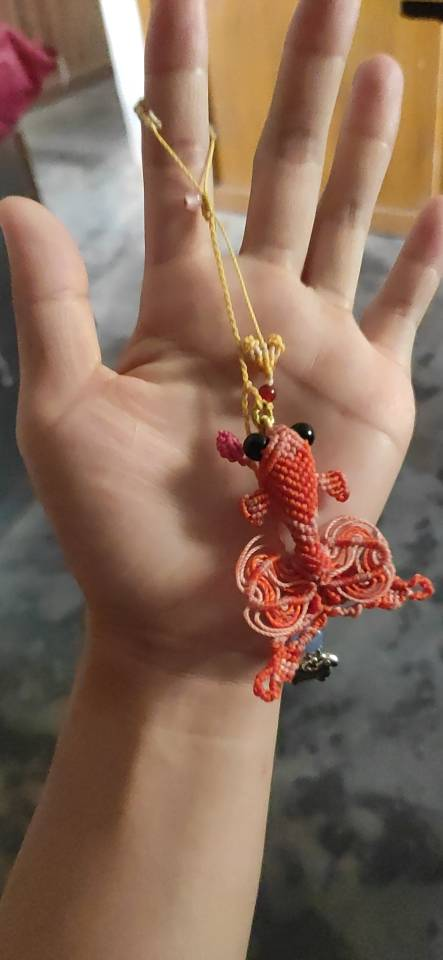 中国结论坛 金鱼 养金鱼不死的小窍门,十大最好养的金鱼,中国十大名贵金鱼,金鱼图片大全大图,金鱼直播间下载 作品展示 151220f0e1rv00evrnnnz0