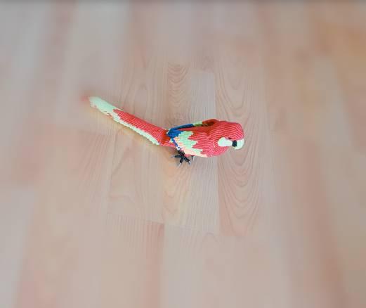 中国结论坛 鹦鹉 鹦鹉,养鹦鹉的人一定要小心,玄凤鹦鹉,十大名贵鹦鹉,养鹦鹉的禁忌 作品展示 155317bdfjjehfrjjdgrg7