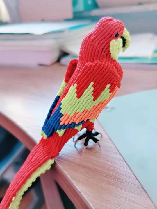 中国结论坛 鹦鹉 鹦鹉,养鹦鹉的人一定要小心,玄凤鹦鹉,十大名贵鹦鹉,养鹦鹉的禁忌 作品展示 155317pqq8q48eqqeo8qnq