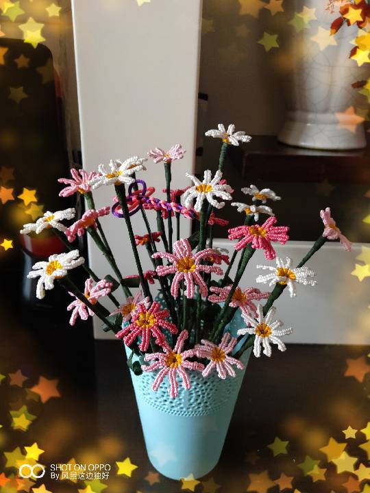 中国结论坛 菊花 菊花茶的功效与作用,菊花的功效与作用,菊花是什么意思了,菊花是什么器官,菊花象征含义 作品展示 164948s188fscc4xi10qqi