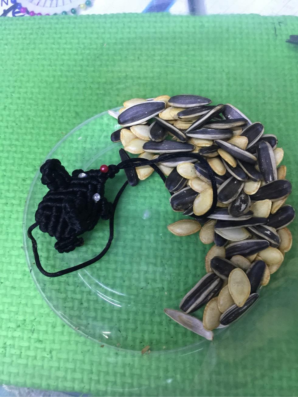 中国结论坛 鼠,小老鼠有点胖  作品展示 145838if6eoqmsgut60zhs