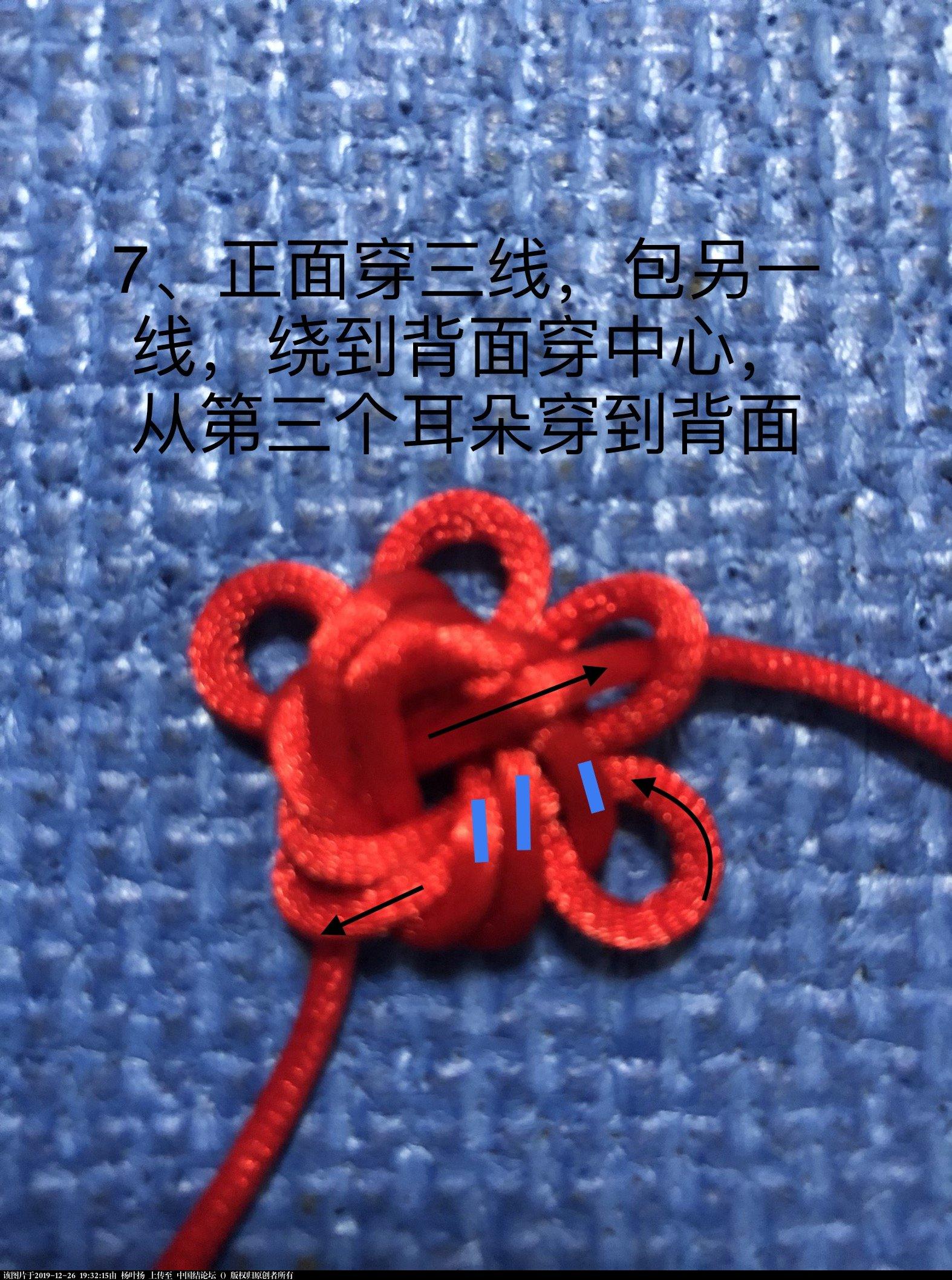 中国结论坛 学习团锦冰花随记之一:单个团锦冰花  图文教程区