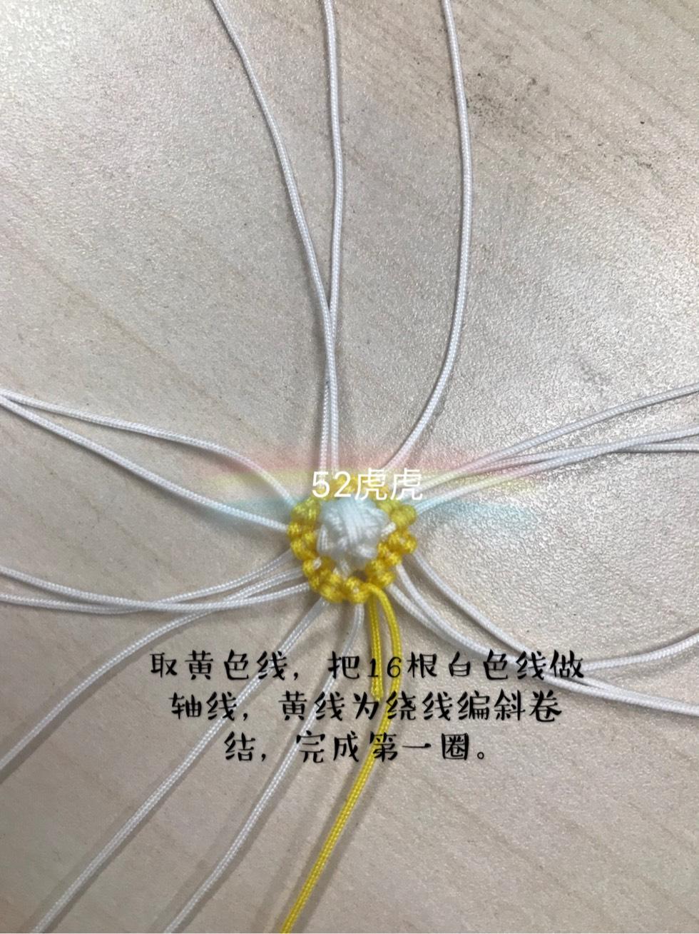 中国结论坛 小玉米 小玉米,玉米,迷你的小玉米叫什么,特别小的玉米叫什么,袖珍小玉米 图文教程区 130349yjbbijitwe7zddys