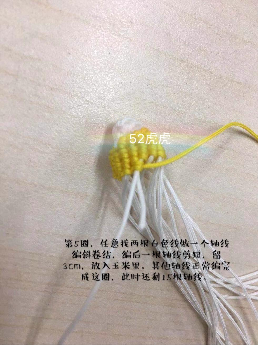 中国结论坛 小玉米 小玉米,玉米,迷你的小玉米叫什么,特别小的玉米叫什么,袖珍小玉米 图文教程区 130352rcdke0tdtfvk6b92