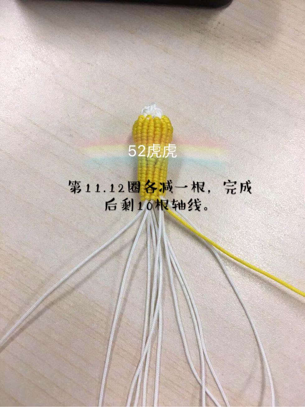中国结论坛 小玉米 小玉米,玉米,迷你的小玉米叫什么,特别小的玉米叫什么,袖珍小玉米 图文教程区 130355c642vpay6zibn02o