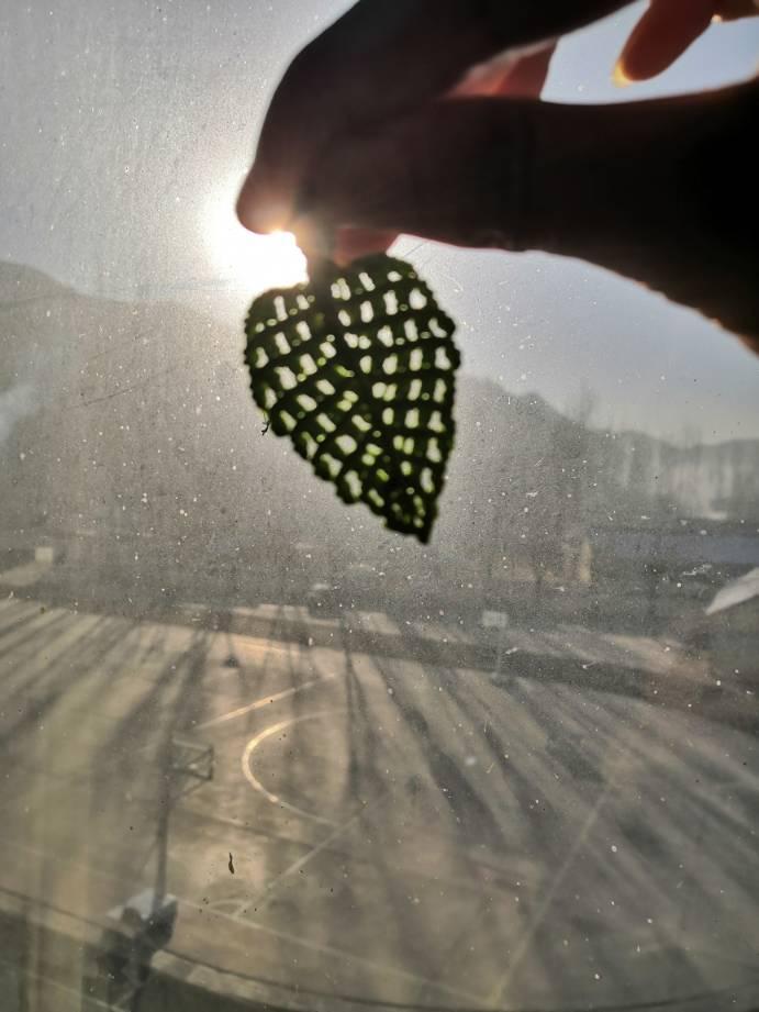 中国结论坛 冬天里的一抹亮色,你喜欢吗 冬天,冬天里,一抹,亮色,喜欢 作品展示 134257sc8e1z6o44gzuf9u