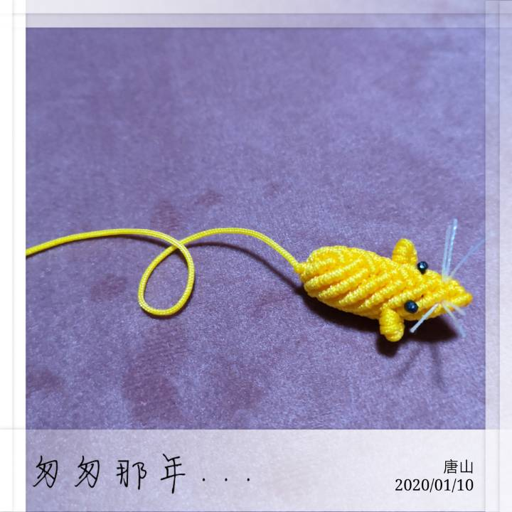 中国结论坛 鼠 十二生肖出生年份表,鼠年男孩名字首选,为什么说十鼠九苦,鼠年男孩起名字,老鼠的吉祥寓意 作品展示 214302ofye70eggkqlycnq