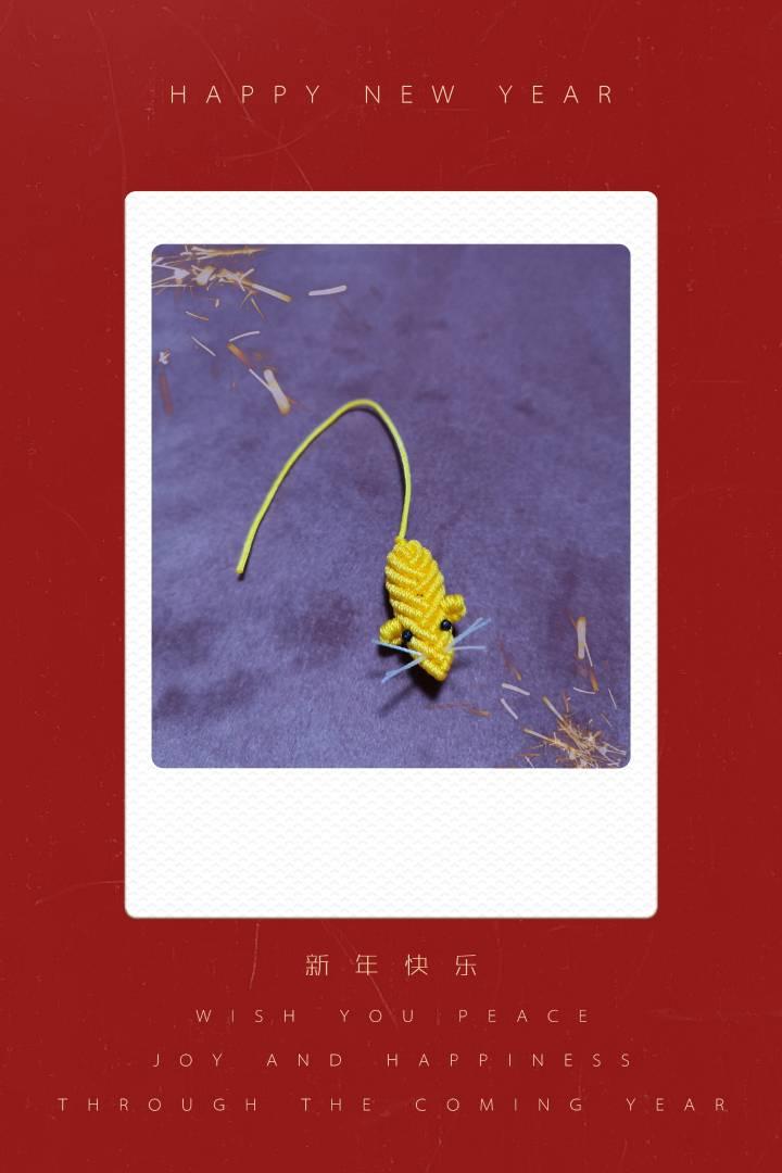 中国结论坛 鼠 十二生肖出生年份表,鼠年男孩名字首选,为什么说十鼠九苦,鼠年男孩起名字,老鼠的吉祥寓意 作品展示 214304fc1586vcz6h2iv61