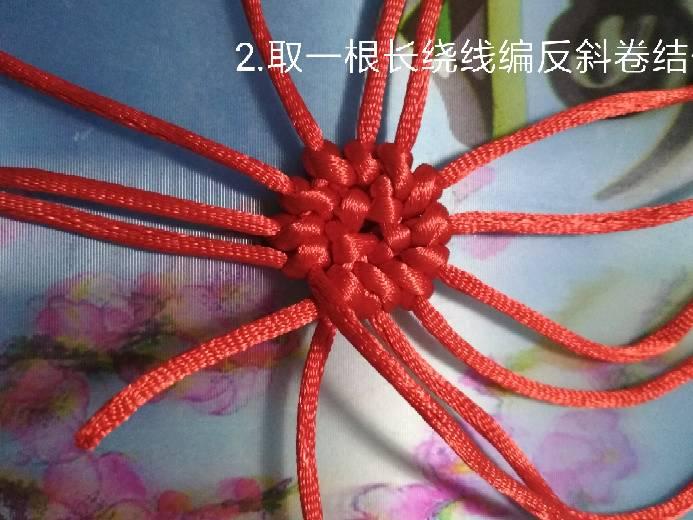 中国结论坛 柿子教程  图文教程区 123307b6j6gprryp5dr2lp