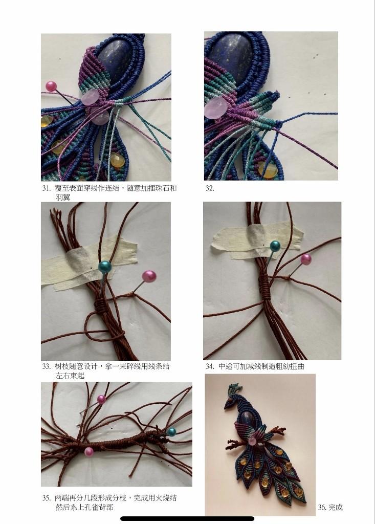 peacock08.jpg