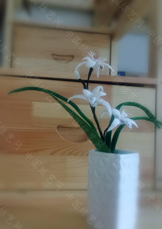 中国结论坛 兰花 一亿二仟万的兰花图片,兰花的寓意和象征,十大名贵兰花,兰花图片 作品展示 174929r9b2dbjdm2bwxkma