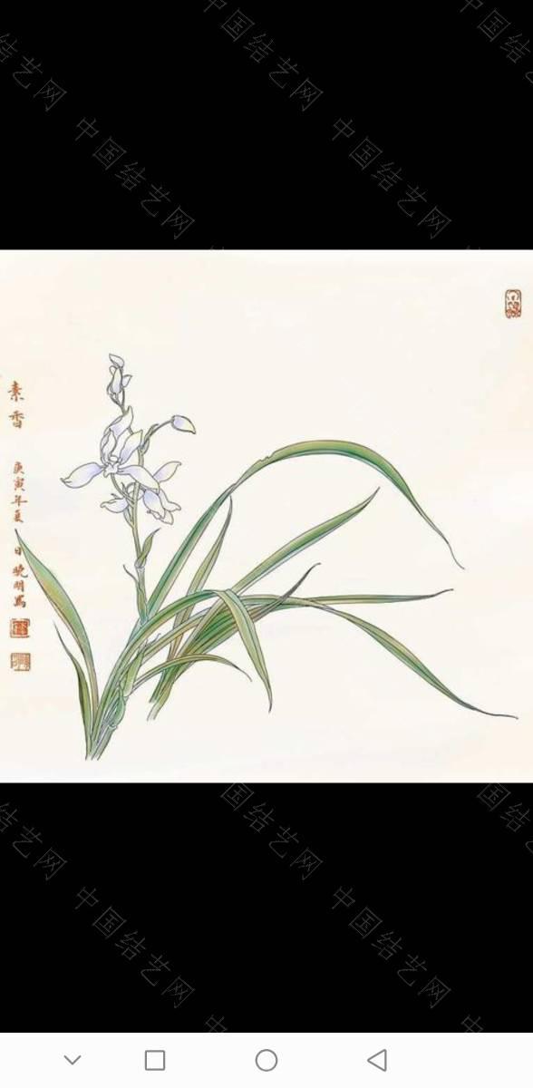中国结论坛 兰花 一亿二仟万的兰花图片,兰花的寓意和象征,十大名贵兰花,兰花图片 作品展示 174932bbmq303pr7imymm3