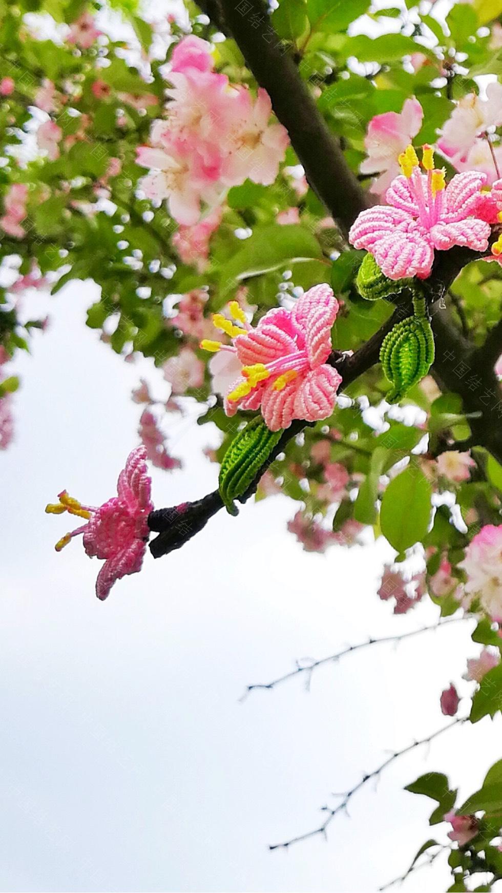 中国结论坛 桃花朵朵开  作品展示 213530bg1kki6gwv8jwvdk
