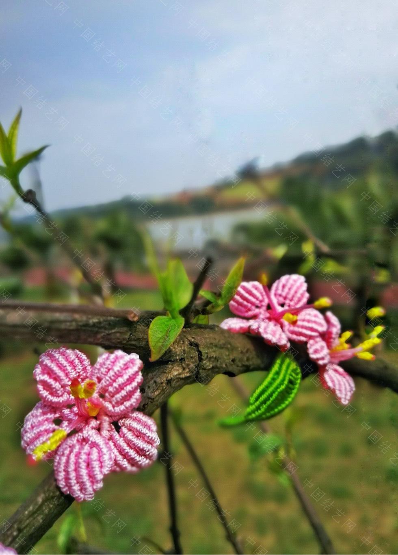 中国结论坛 桃花朵朵开  作品展示 213602h0z5s0ss0ab3af3a