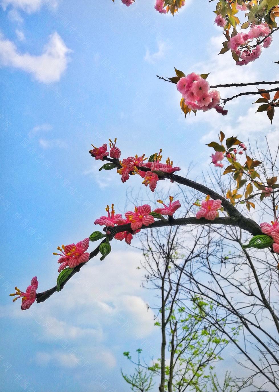 中国结论坛 桃花朵朵开  作品展示 213605kmkjfa2qr7j7gg87