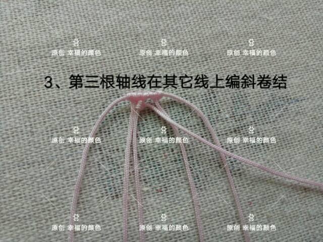 中国结论坛 原创葱兰 葱兰和韭兰的区别,葱兰什么时候开花,葱兰的养殖方法,葱兰需修剪吗,韭兰如何爆盆 图文教程区 194416yqyqlfrqqdqdrl0u