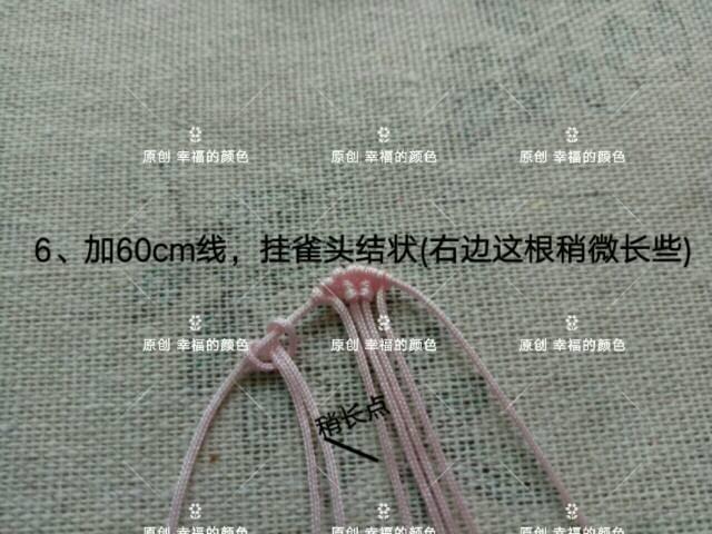 中国结论坛 原创葱兰 葱兰和韭兰的区别,葱兰什么时候开花,葱兰的养殖方法,葱兰需修剪吗,韭兰如何爆盆 图文教程区 194418h4pzp7vpf0wpeyb9