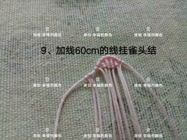 中国结论坛 原创葱兰 葱兰和韭兰的区别,葱兰什么时候开花,葱兰的养殖方法,葱兰需修剪吗,韭兰如何爆盆 图文教程区 194419thhz5cm0ss0soyny