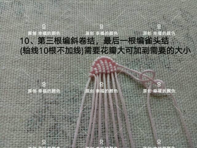 中国结论坛 原创葱兰 葱兰和韭兰的区别,葱兰什么时候开花,葱兰的养殖方法,葱兰需修剪吗,韭兰如何爆盆 图文教程区 194420zas6ie93ieollo67