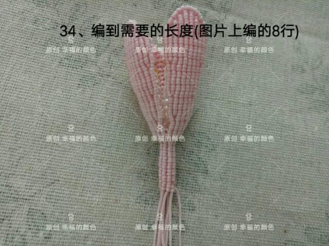 中国结论坛   图文教程区 194611xpypxbinprf5lpy1