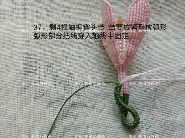中国结论坛   图文教程区 194623tu66l7emqaaayz7e