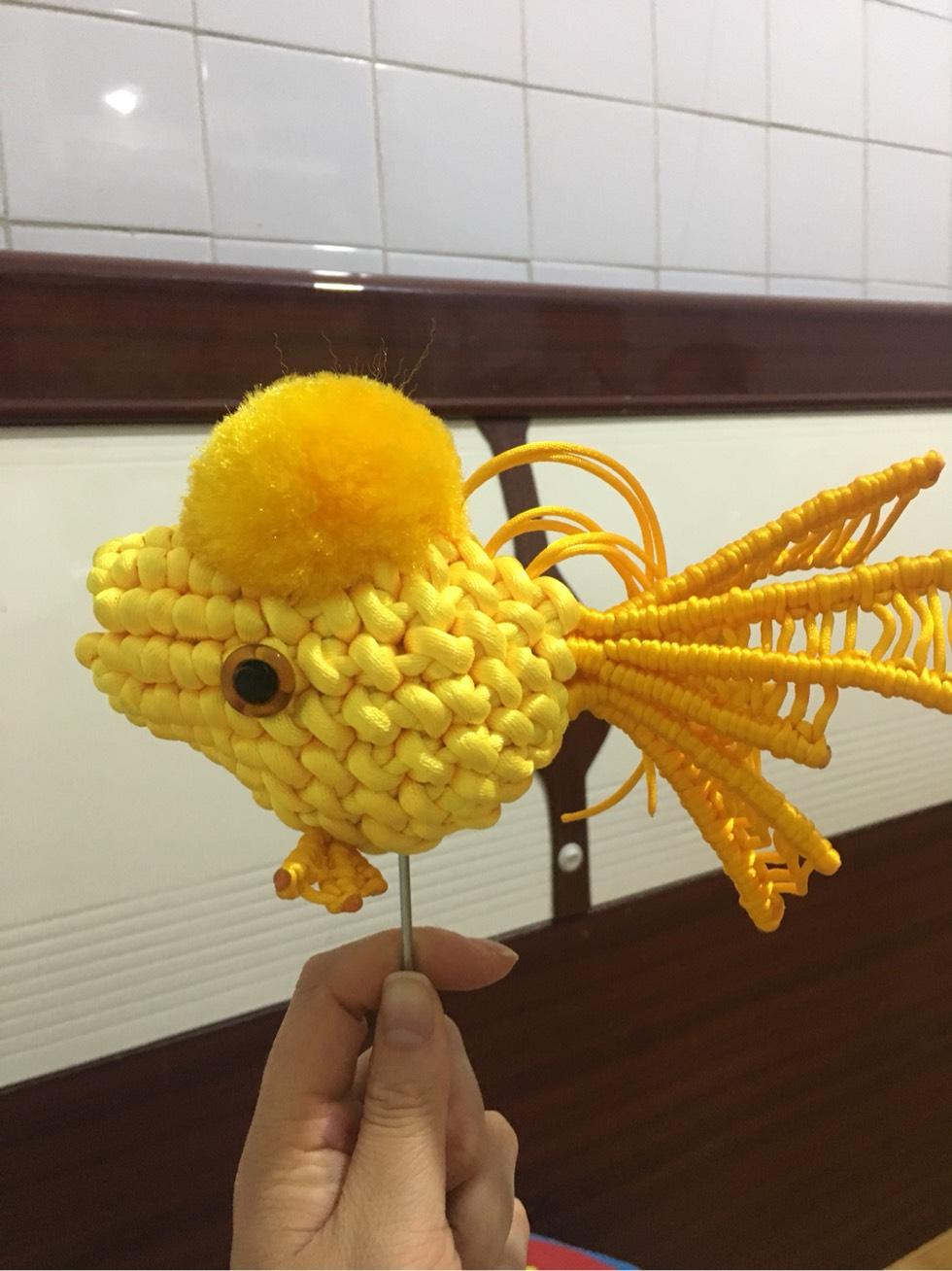中国结论坛 大金鱼 大金鱼,养三条金鱼的寓意什么,哪种金鱼最好养排名,什么观赏鱼养大了值钱,鸿运当头金鱼好养吗 作品展示 205802aesssd6jzud1ju6w