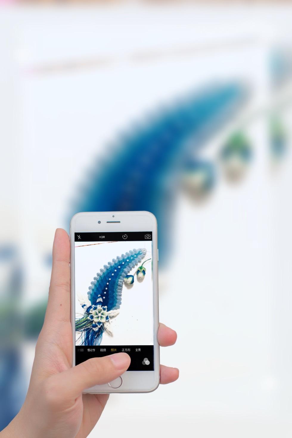 中国结论坛 植物  作品展示 163335dtqtizqb3zbl3imh
