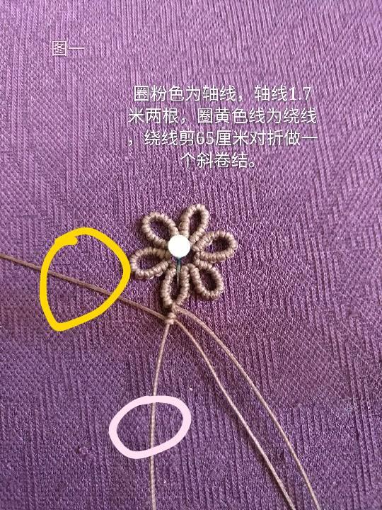 中国结论坛 小雏菊 小雏菊,今年为什么流行小雏菊,小雏菊寓意和象征,小雏菊为什么火了 图文教程区 225839bk3wislok8oowgsg