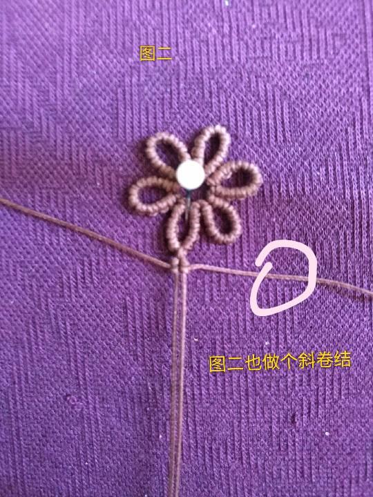 中国结论坛 小雏菊 小雏菊,今年为什么流行小雏菊,小雏菊寓意和象征,小雏菊为什么火了 图文教程区 225841xcj7aqejaevpjj1q